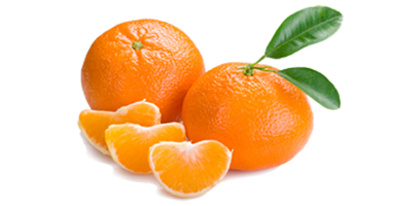 California Oranges Fundraiser–Just What the Doctor Ordered!